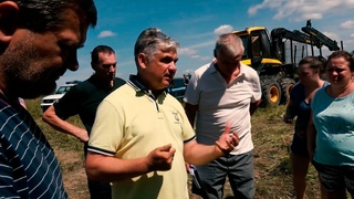 Беспорядочная массовая вырубка леса в Рузском округе на землях сельхозназначения