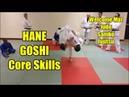 HANE GOSHI CORE SKILLS