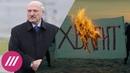 Новая Конституция и передача власти избраннику Путина. Чего ожидать от Лукашенко?