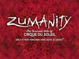 Cirque du Soleil - Zumanity at Zumanity Theater - New York - New York Hotel & Casino in Las Vegas