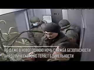 В Екатеринбурге воры-неудачники пытались похитить елку за два часа до Нового год