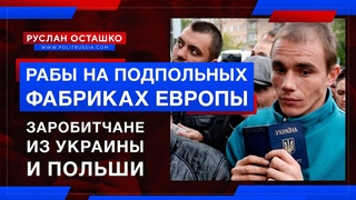 Заробитчане из Украины и Польши - рабы на подпольных фабриках Европы (Руслан Осташко)