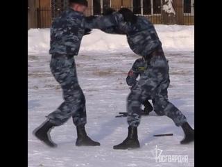 Торжественные мероприятия, посвященные Дню защитника Отечества  г.