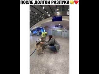 ЭТО ЛЮБОВЬ ♥