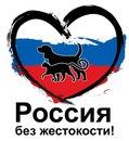 Фотоальбом Виктории Барминой