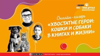 Психология животных: можно ли рассмешить кошку? | Детский лекторий с Александром Толмачевым