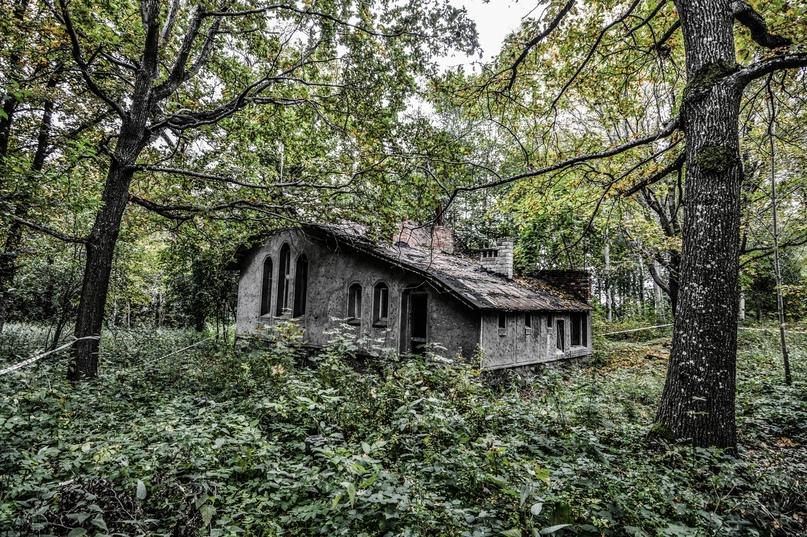 Сатанинский лес