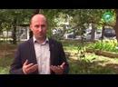 Видеоблог №155- Как Наполеон Москву жёг