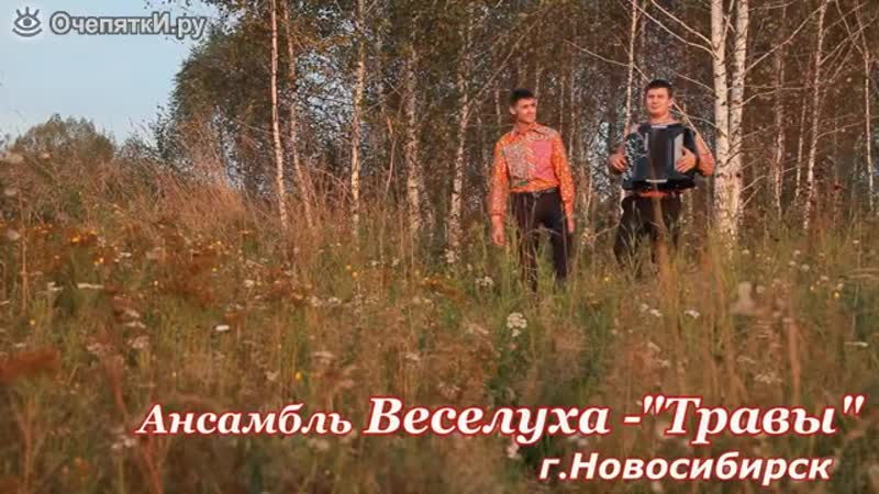 Травы Ст И С Юшина муз В Я Шаинского Анс Веселуха Новосибирск